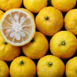 ゆずって身体に良いの?ゆずに含まれる栄養素と期待できる嬉しい効果について解説!