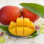 マンゴーって身体に良いの?マンゴーに含まれる栄養素と期待できる嬉しい効果について解説!